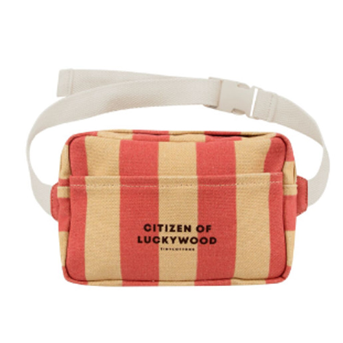 [tinycottons]citizen fanny bag